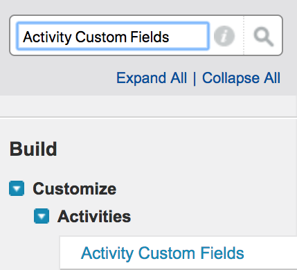 Activity_Custom_Fields_yo.png